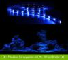AQUARIUM MONDLICHT, LED LICHTLEISTE 60 CM FLEXI-SLIM BLAU KOMPLETTSET